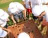 Team Building / Takım Oyunları - 2