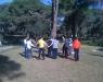 Fun Forest Park - 6