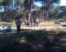Fun Forest Park - 9