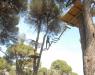 Macera Parkı - 2