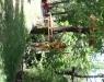 Eco Family Park - Atkiviteler ve Etkinlikler - 6