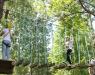 Ağaç Macera Parkı - 6