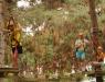 Ağaç Macera Parkı - 3