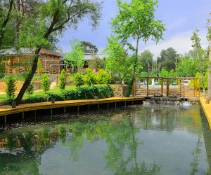 Eco Family Park Fotoğrafları - 5